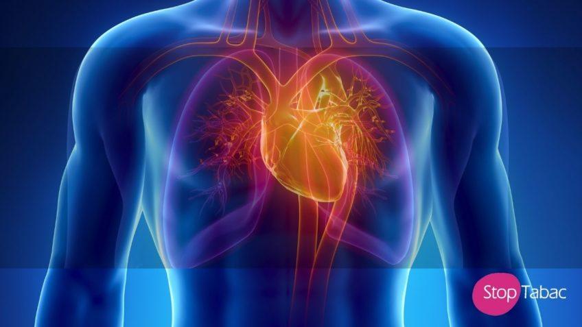 Gérer son stress par la cohérence cardiaque
